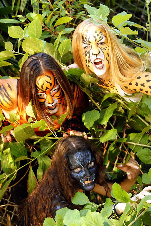 St.Petersburg, FL Apr 28, 2009 Rogue Images 3 Kitties~Marissa, Shannon & Vanessa