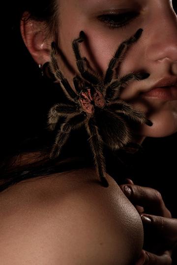 Orange County, CA May 15, 2009 [yes, the tarantula is real]
