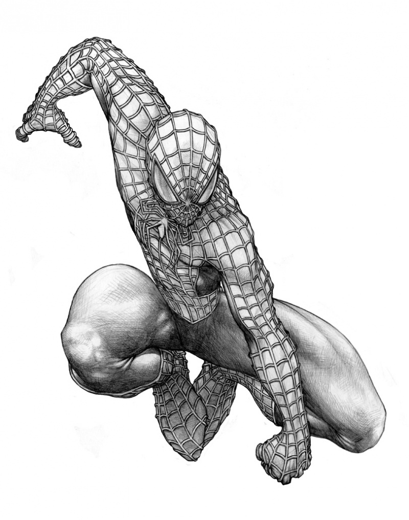 May 19, 2009 spidey