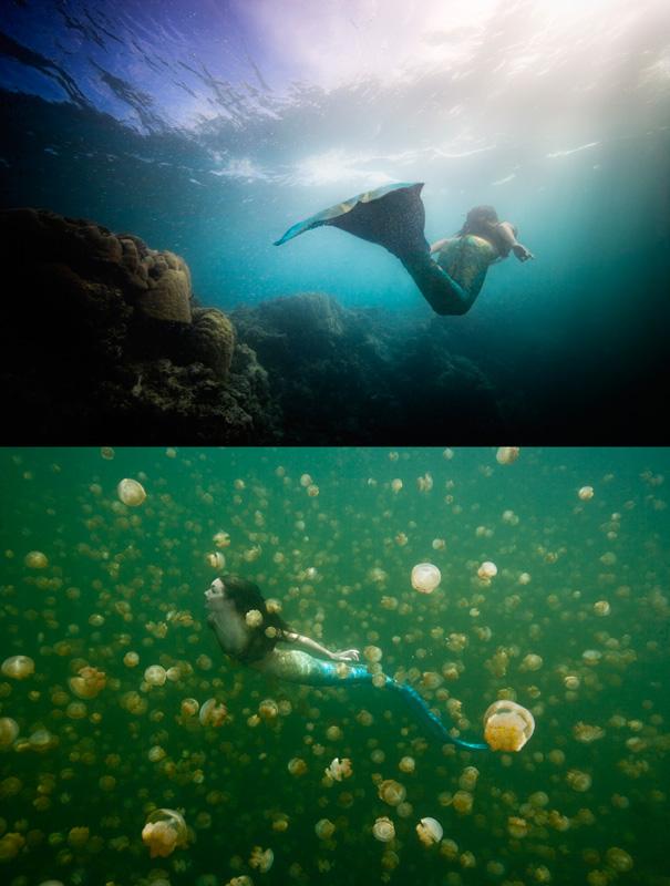 South Pacific: Yap & Jellyfish Lake, Palau, Micronesia May 21, 2009 © Chris Crumley Mermaid Underwater