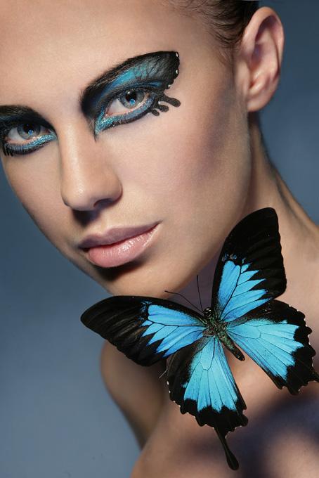 Jun 11, 2009 Ulysses butterfly