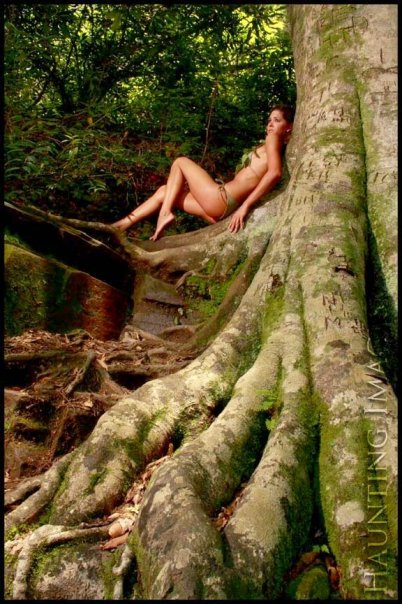 Twin Falls, SC Jun 23, 2009 Tree Goddess