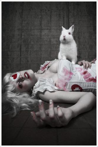USA, Virginia Jun 24, 2009 StuntKid & Freyagushi Pets hate Vets