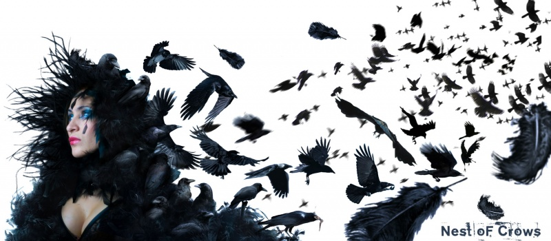 Aug 13, 2009 Nest Of Crows