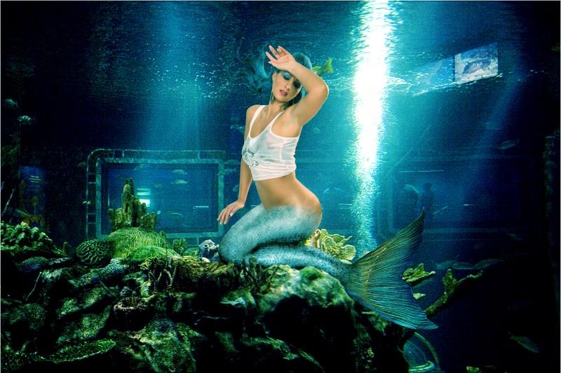 Sep 05, 2009 Seatails Captive Mermaid