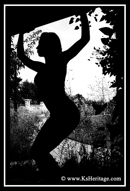 On the campus of Kansas State University in Manhattan, Kansas Sep 16, 2009 KANSAS HERITAGE PHOTOGRAPHY Silhouetted Beauty!