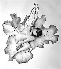 Sep 19, 2009 Orchid Fairy drawn in charcoal