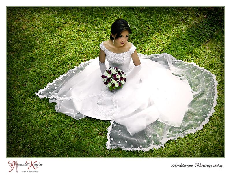 Oct 01, 2009 Ambiance Photography  .... bridal fashion