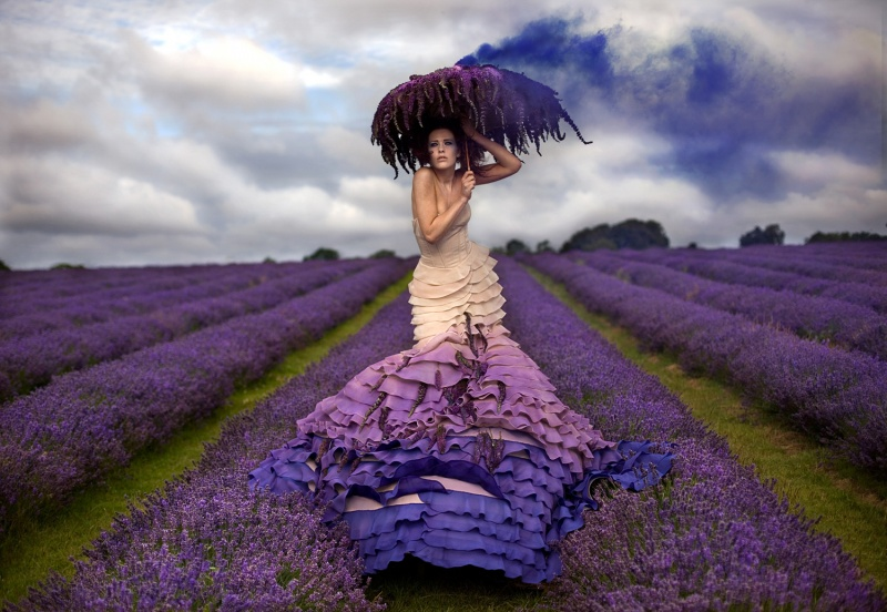 secret!! (shot very early am on Lavender Farm) Oct 08, 2009 Kirsty Mitchell lavenda queen - Part of Wonderland Project