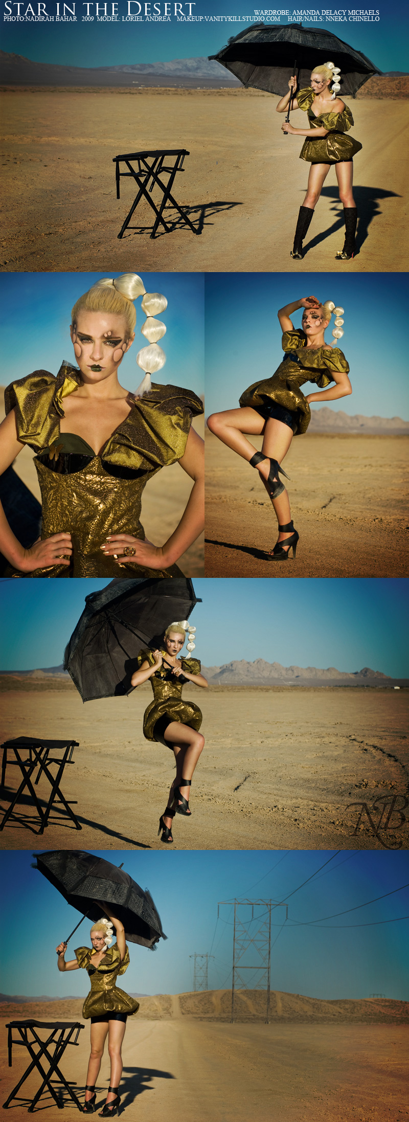 Oct 17, 2009 Rawr! Desert Life