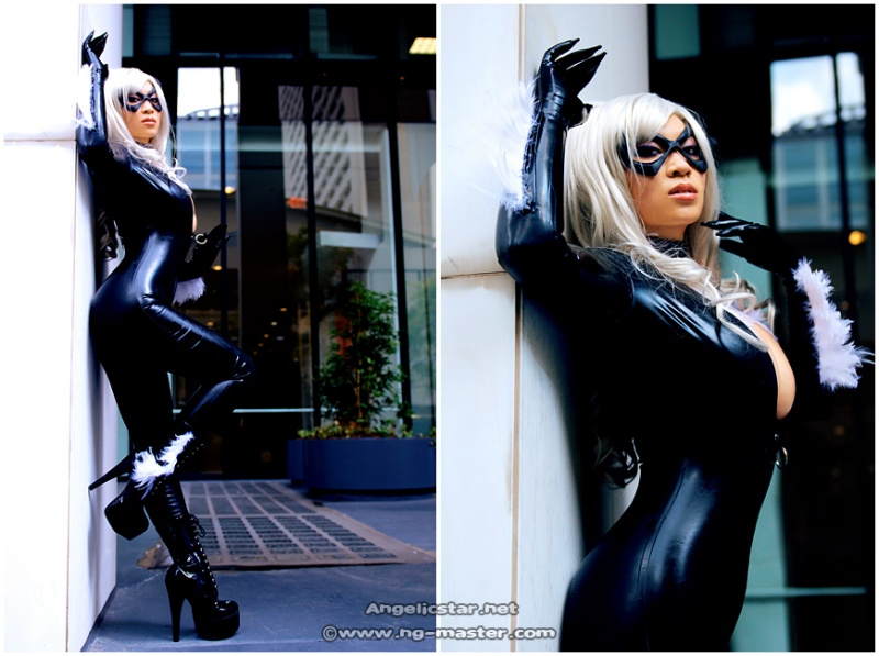 Atlanta, during Dragoncon 2008 Oct 20, 2009 NgMaster.com Black Cat, revisited
