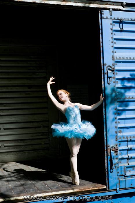 Michigan Nov 08, 2009 AWS Photo The Dancer