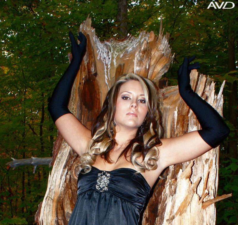 Hollow Tree Nov 12, 2009 AVD