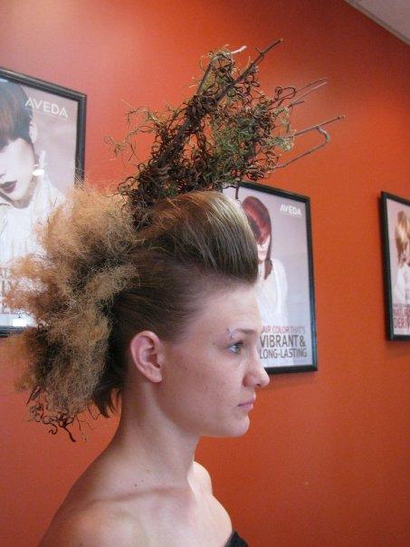 Nov 15, 2009 2009 hairball