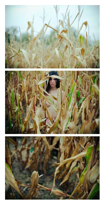 near Paris Nov 16, 2009 Tom Spianti Mlle H loves cornfield