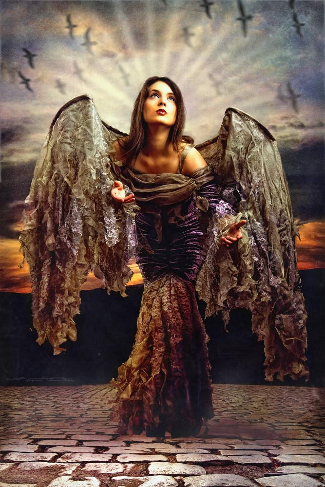 Nov 16, 2009 JSVP Fallen Angel