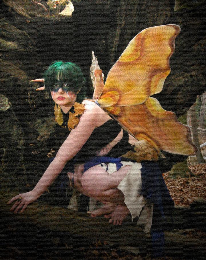 Nov 20, 2009 Lash Photography Autumn fairy