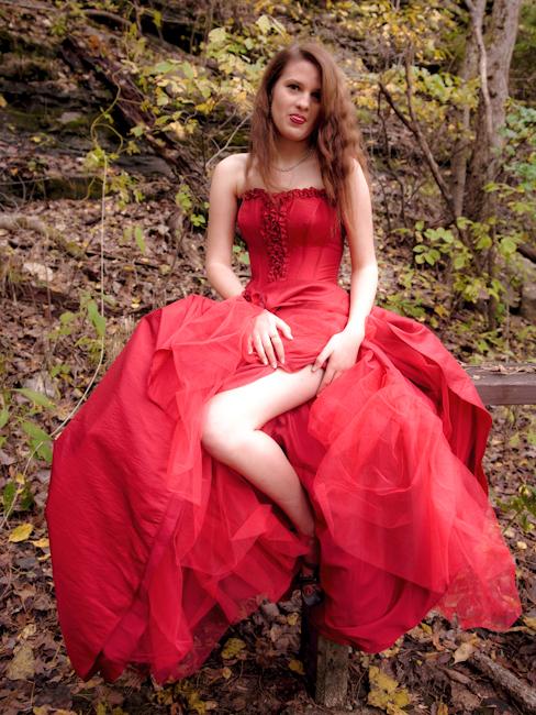 Arkansas Nov 23, 2009 2009 ~My Favorite Red Dress~