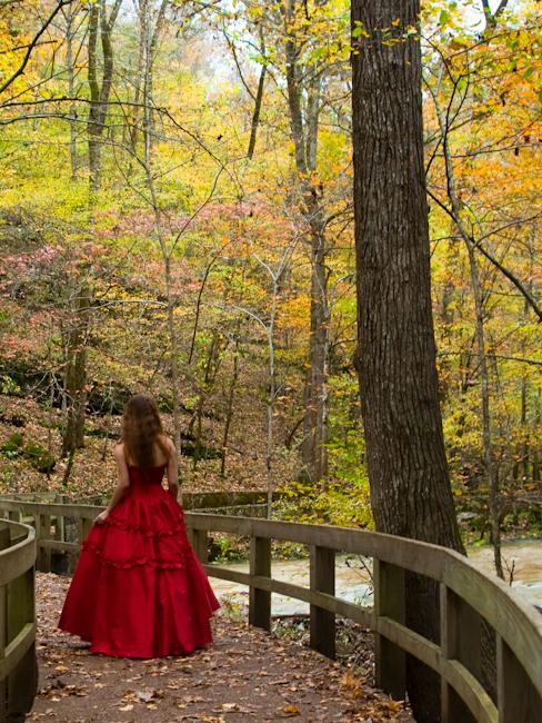 Arkansas Nov 23, 2009 jwb Imagery(2009) Walking Away