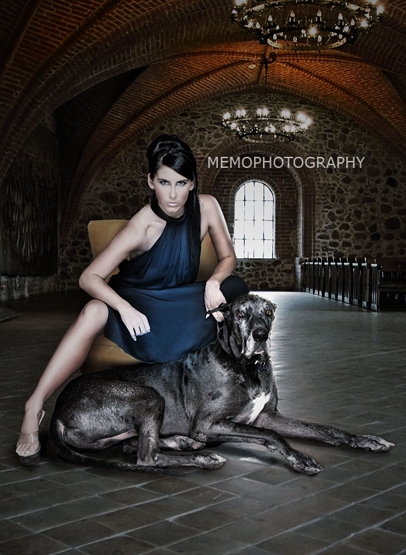 Dec 07, 2009 Memophotography