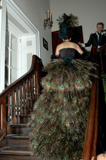 Stanmer House, Brighton Dec 11, 2009 unknown peacock train