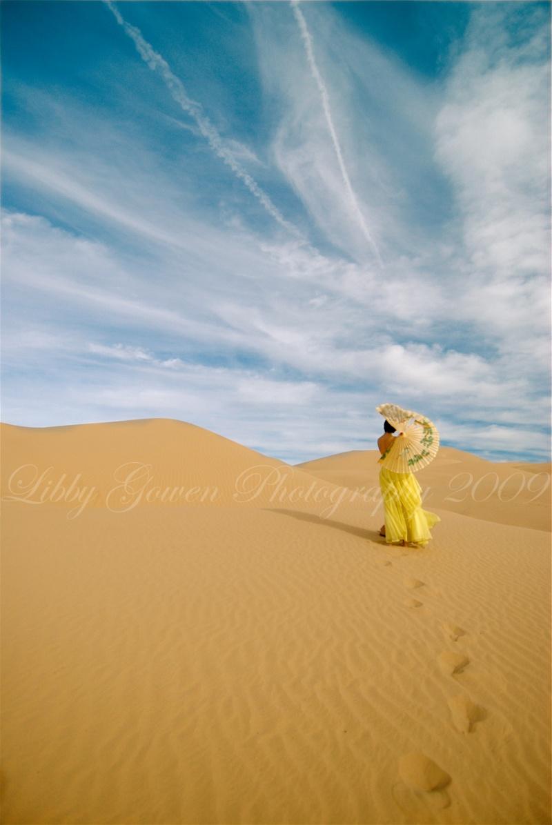 Dec 16, 2009 Libby Gowen 2009