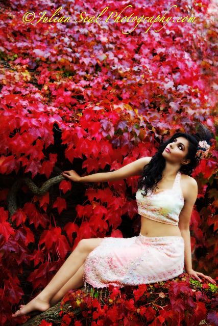 Kent, England Dec 28, 2009 Julian Seal Photography Autumn Red