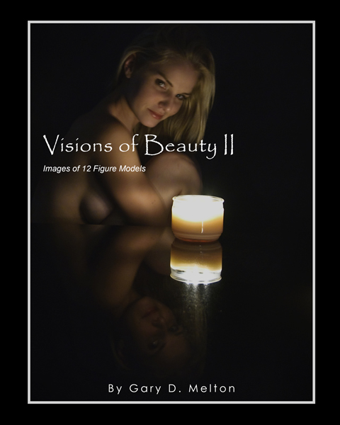 Jan 29, 2010 copyright ©2010 Gary Melton  All Rights Reserved Cover of Visions of Beauty II