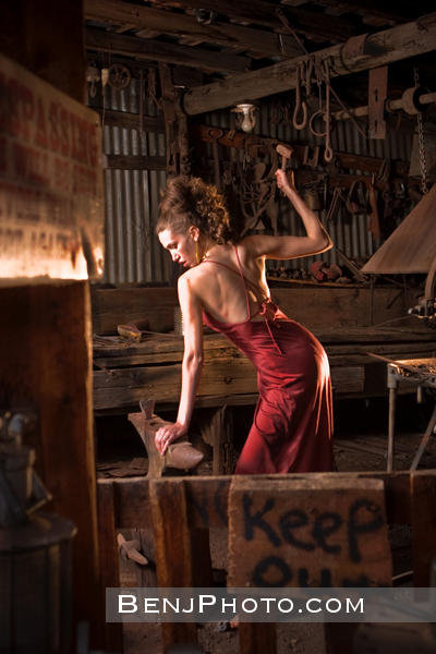 Jan 29, 2010 Carlos Benjamin Mistress of the Forge