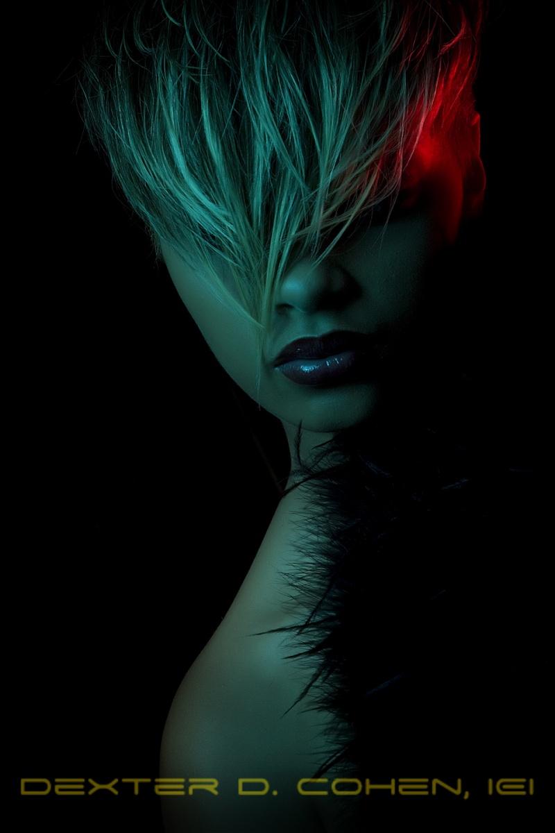 Phoebus, Va Apr 15, 2010 Dexter D. Cohen, IEI The Light...   Make-Up: Sy Martin Hair: Lamont Wagstaff Styling: Altorrin McIntyre