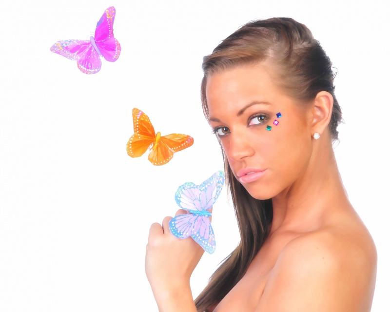 my studio Apr 18, 2010 PhotobyAndy Butterflies