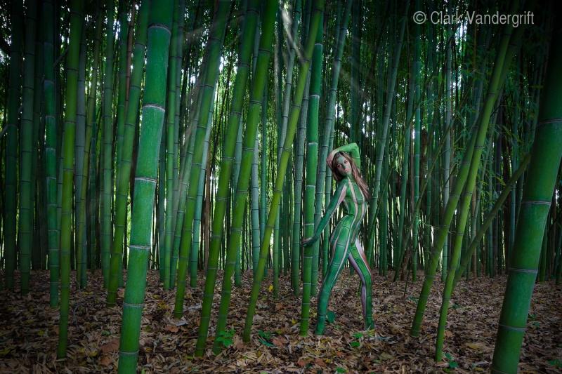 Baltimore, MD Apr 29, 2010 Clark Vandergrift photography Tree people Series 2010