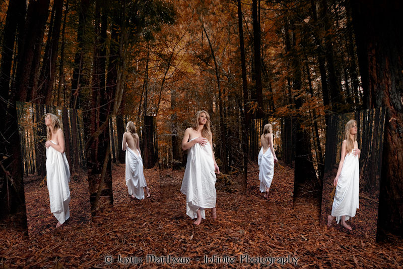 Mt Macedon May 10, 2010 Justin Matthews - Infinite Photography Forest of mirrors - Artistic shot of the day 12/11/14
