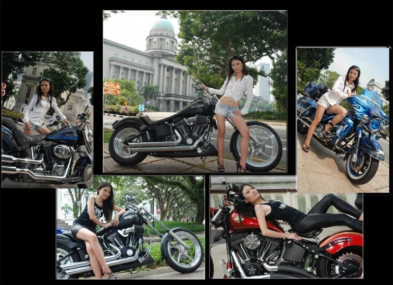 Singapore Jun 18, 2010 zhallart Harleys Galore