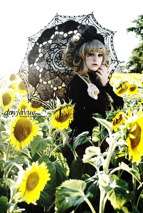 Jul 03, 2010 DayJaVUE Photography Gothic Sunflowers