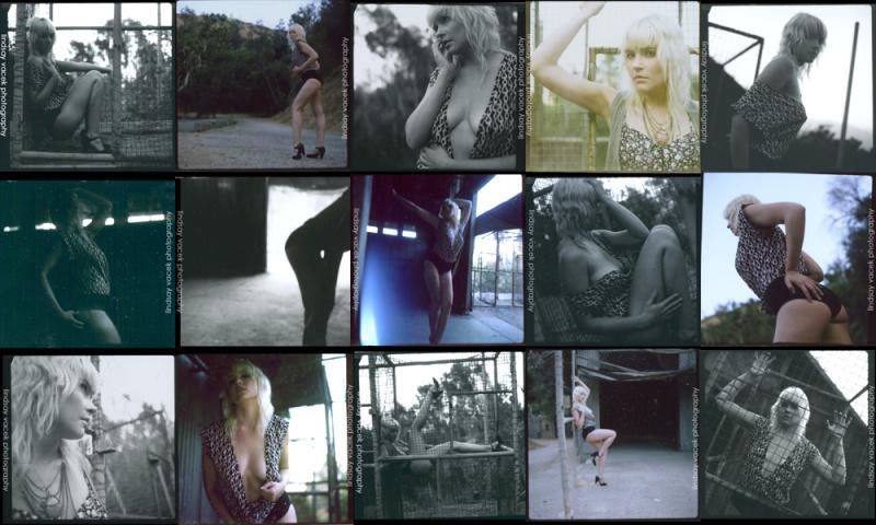 Jul 21, 2010 The Polaroid Experiment