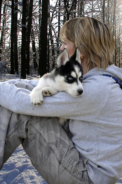 Jul 23, 2010 Kristan Proudman Husky Pup