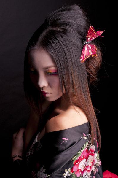 Nov 15, 2010 Gladys Ng Geisha A Lone Butterfly