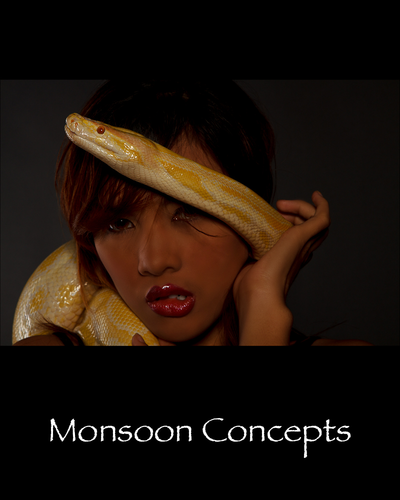 Nov 21, 2010 Monsoon Concepts