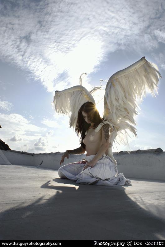 Dec 09, 2010 from the Fallen angel series
