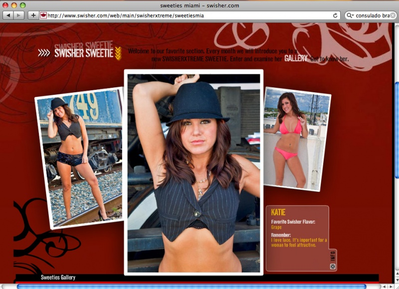 Dec 14, 2010 Swisher Xtreme Website