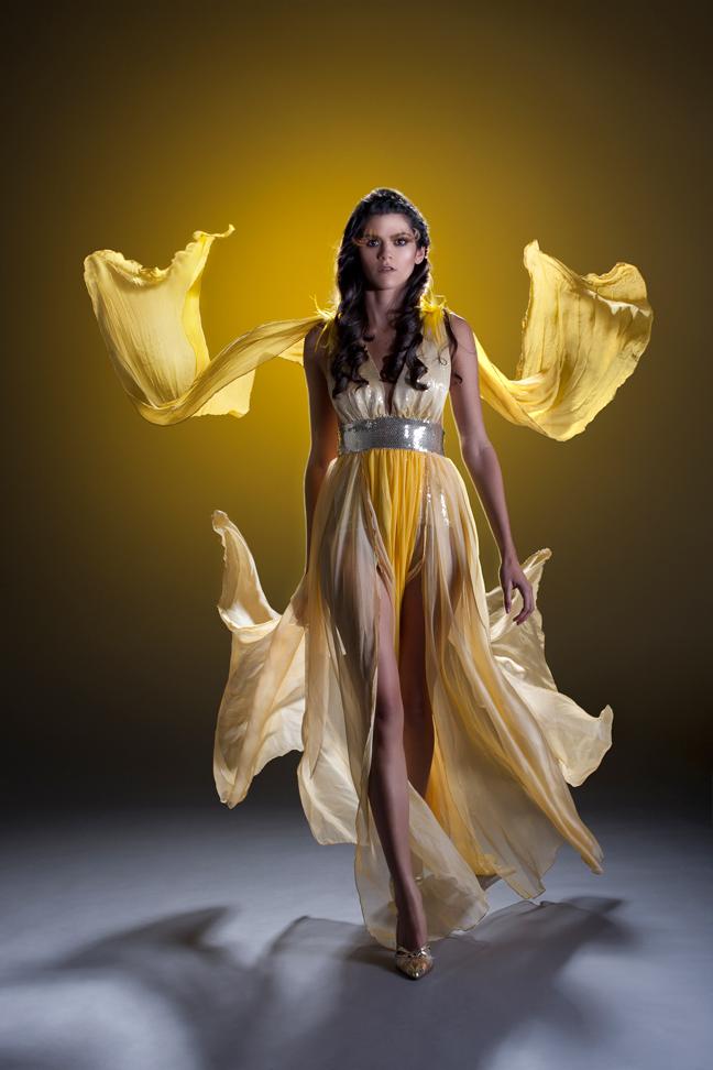 Dec 31, 2010 Goddess Dress by Basil