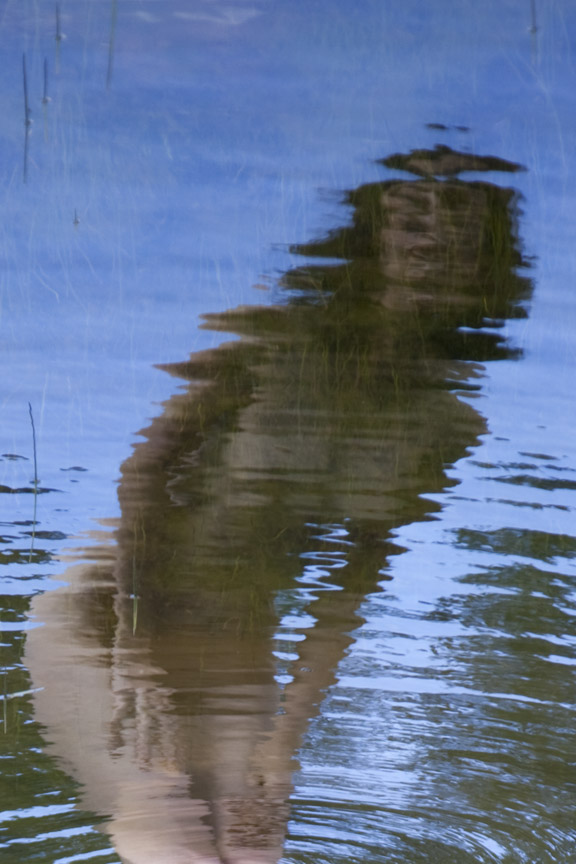 Jan 09, 2011 abstracted reflection