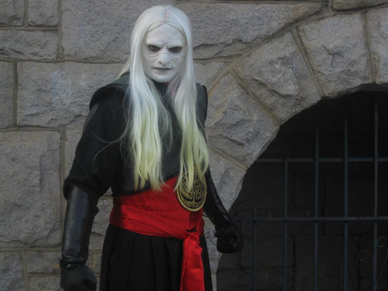 Dragoncon, Atlanta, Georgia Jan 15, 2011 Tim J. Hays Me in my Prince Nuada costume