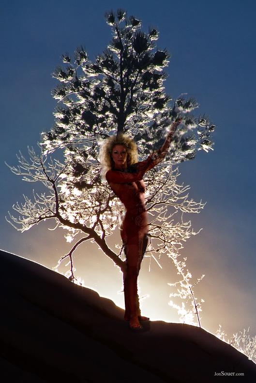 Minneapolis Jan 31, 2011 Jon Souer 2010 Living tree