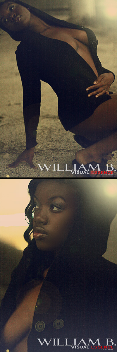Feb 01, 2011 William B Visual Essence