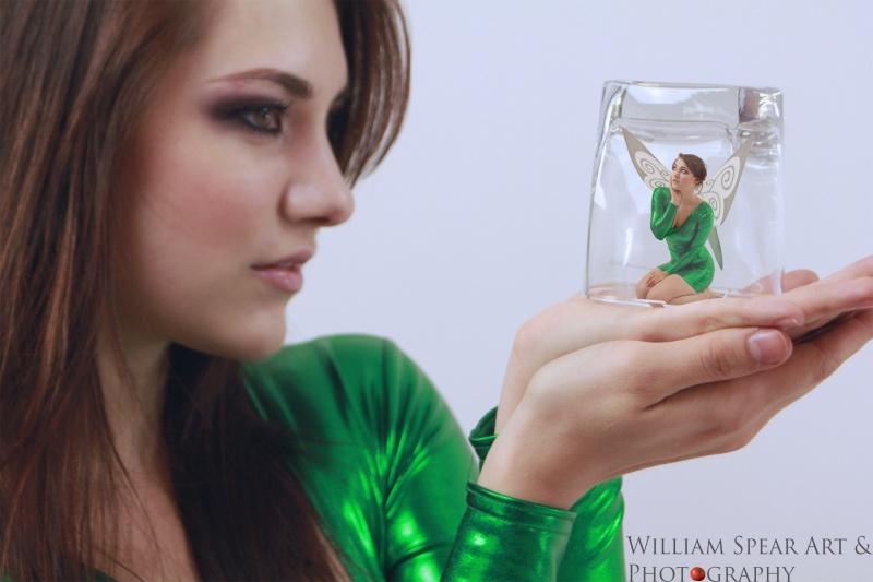 Florida Feb 06, 2011 (c) William Spear 2011 Sweet Fairy