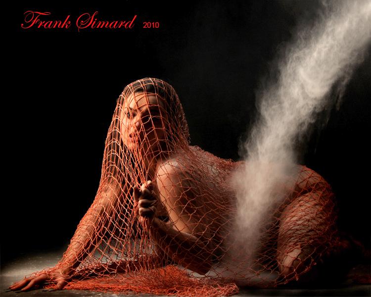 Studio Zoo Image, Montreal Feb 10, 2011 Frank Simard beauty netted - powder streamed