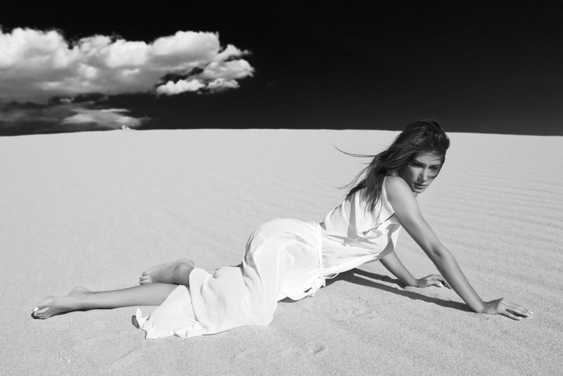 the dunes Feb 22, 2011 Sand dunes