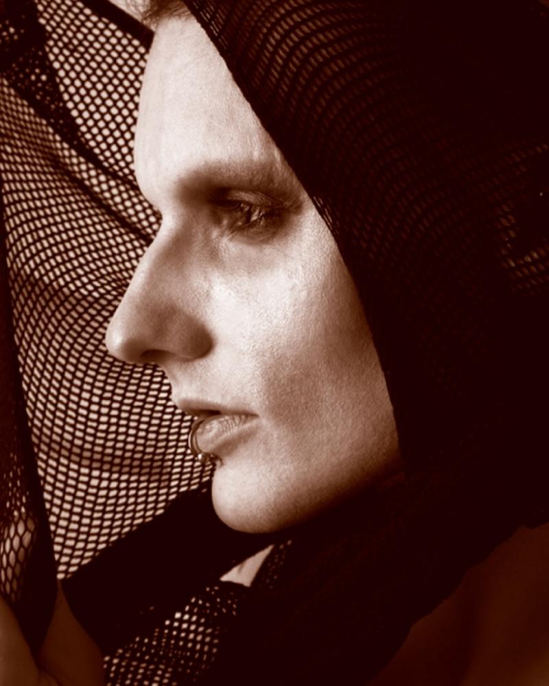 Feb 27, 2011 Steven Ledell Photography DUCK